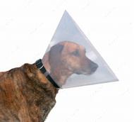 Защитный воротник Protective Collar