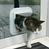 Дверца врезная для стеклянной двери 4-Way Cat Flap especially for Glass