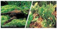 Двухсторонний фон Marina Double Sided Aquarium Backround 45см*7,5м коряга с растениями