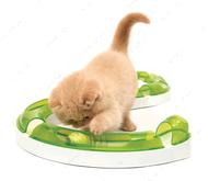 """""""Play Circuit 2.0"""" Интерактивная игрушка для кошек"""