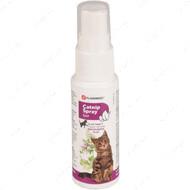 Кошачья мята для кошек Catnip Spray