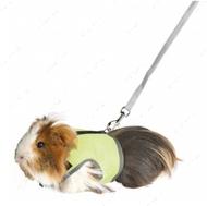 Комплект мягкая шлейка-жилет и поводок для крыс, хорьков