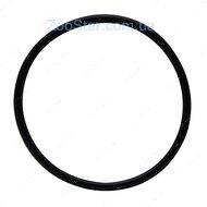 Laguna Уплотнительное кольцо F/5000-7000-10000