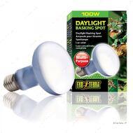 Лампа Exo Terra Sun Glo Neodymium R25, 100 Вт.