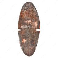 Мел Сепия для птиц скелет каракатицы шоколад