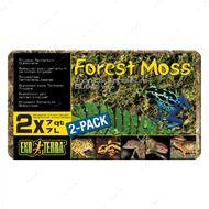 Наполнитель лесной мох для рептилий  Forest Moss, 500гр