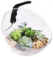 Настольный аквариумный набор Wabi Set