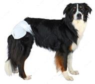 Памперсы для собак,  упаковка 12 штук