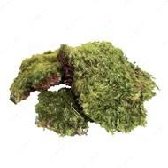 Природный натуральный мох All Natural Frog Moss