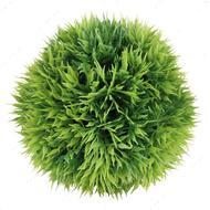 Растение для аквариума, Мяч