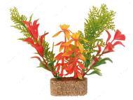 Растение для аквариума, Набор, основание из песка