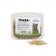 Трава для кошек быстрорастущая Природа
