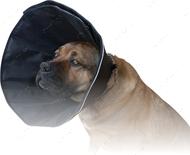 Ветеринарный воротник нейлоновый для собак плотный Dog Extremе