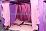"""Выставочная палатка для кошек """"Ваше Сиятельство"""""""