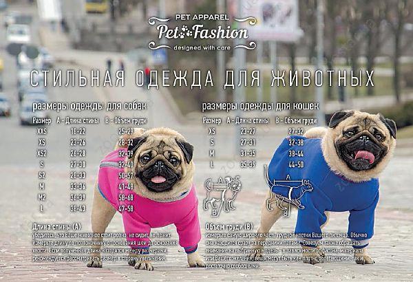 Зоотовары Pet Fashion купить в Украине (Киев)  цены на товары для ... d2956cbc6e9fe